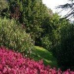 Restauro del giardino storico Sforza-Cesarini a Genzano di Roma