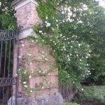 Restauro del giardino storico Sforza-Cesarini a Genzano di Roma (Roma)